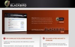 screenshot Blackbird