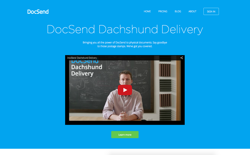 screenshot DocSend Dachshund Delivery
