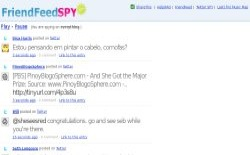 screenshot FriendFeed Spy