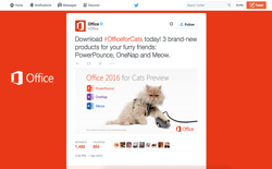 screenshot Microsoft Office 2016 for Cats