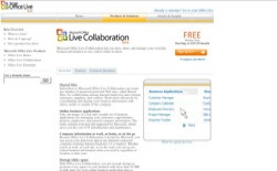screenshot Microsoft Office Live Collaboration